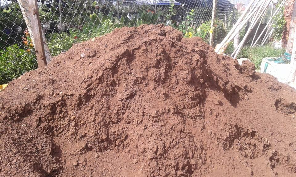 Công dụng của đất phù sa