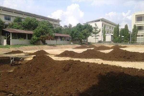 Bán đất thịt trồng cây, đất thịt sạch đóng bao